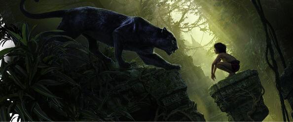 Bagheera and Mowgli 2016 Banner