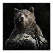 Baloo mowgli the jungle book poster-r72dec36fc08a4eb19173ab8adeedb948 w2q 8byvr 398