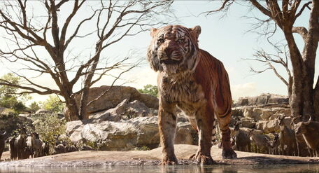 Shere Khan The Tiger 7575658658