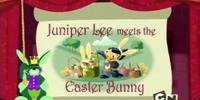 Juniper Meets the Easter Bunny