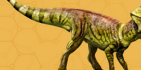 Microceratops