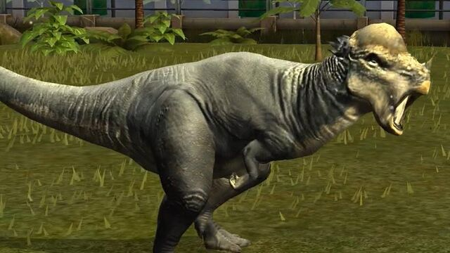 File:Jurassic world the game card pachycephalosaurus by kaijudialga-d8srotb.jpg