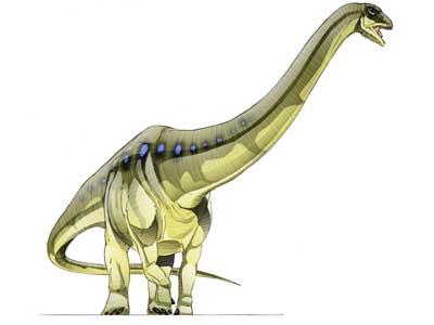 Datei:Aegyptosaurus.jpg