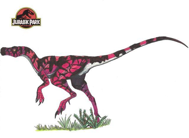 File:Jurassic park herrerasaurus by hellraptor-d4anwyu.jpg
