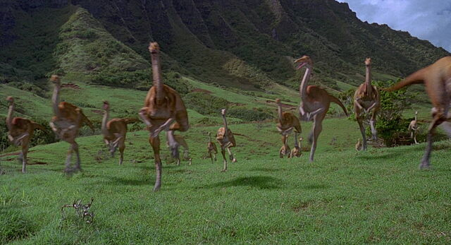 File:Gallimimus-herd.jpg