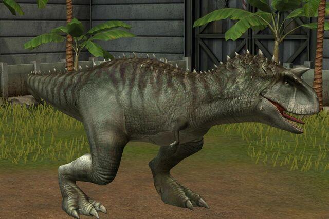 File:Carnotaurus Sastrei (105).jpg