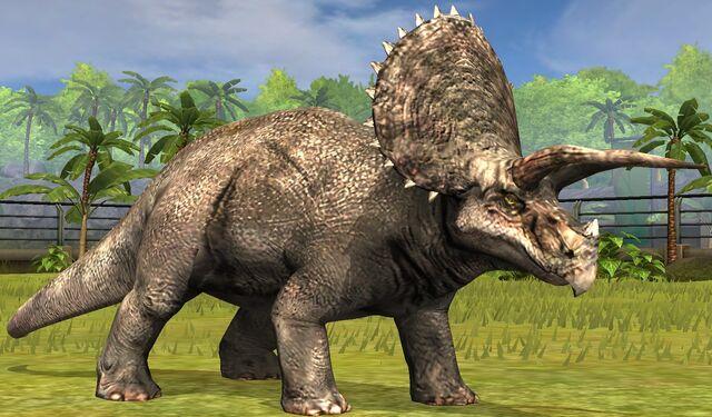 File:Triceratops lvl 10.jpg