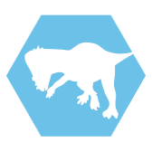 File:Pachycephalosaurus-header-icon.png