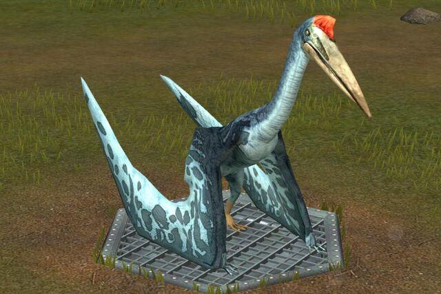File:Quetzalcoatlus (83).jpg