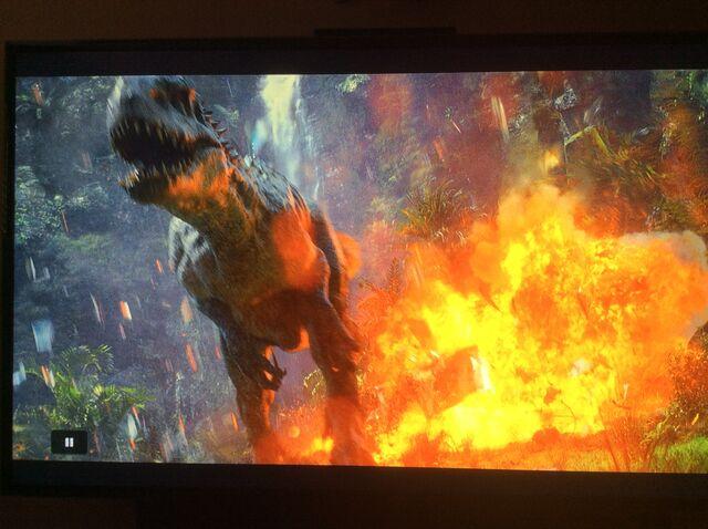 File:I. rex in aviary.jpeg