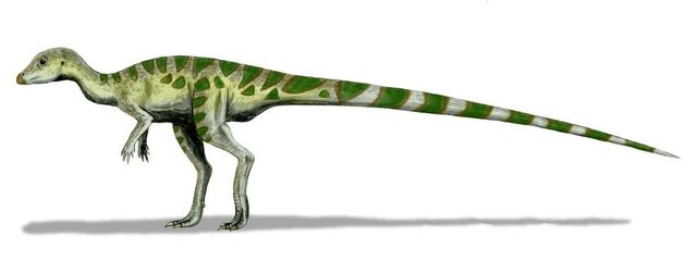 File:Leaellynasaura.jpg