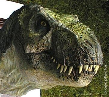 File:Jurassic-Park-2-The-Lost-World-1997-movie-props.jpg