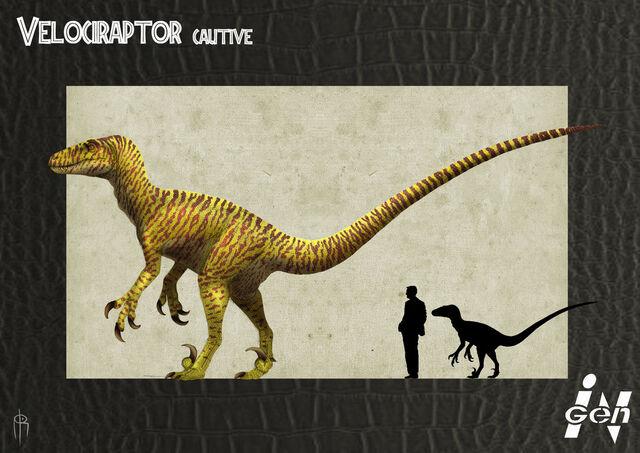 File:Jp cautive raptor remake by jelsin-d5epoau.jpg