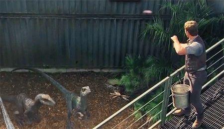 File:Velociraptors.jpg