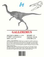 Ingen Dinosaur Info Sheets Gallimimus