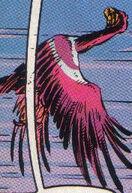 Archeaopteryx.jpg