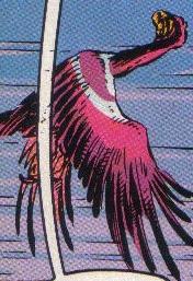 Archivo:Archeaopteryx.jpg