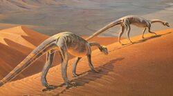 Massospondylus.jpg