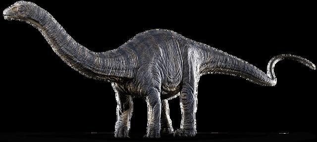 File:Apatosaurus Render.png