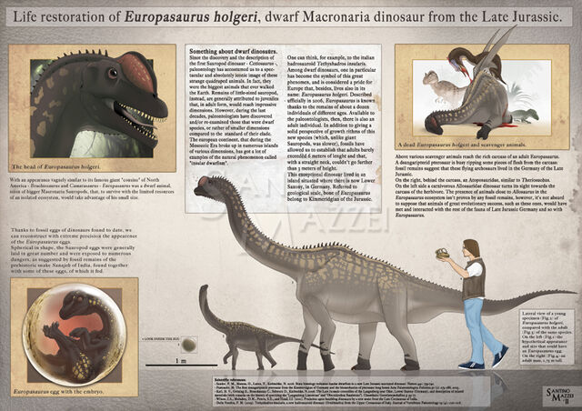 File:Life restoration of europasaurus holgeri by santinomazzei-d4xf9qe.jpg