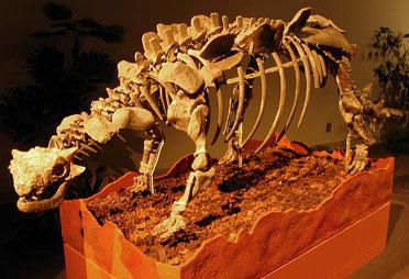 File:Crichtonsaurus.jpg