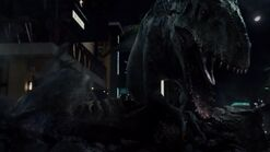 T. rex vs I. rex03