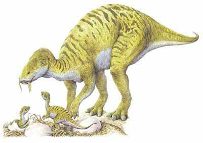 File:Maiasaura2.jpg