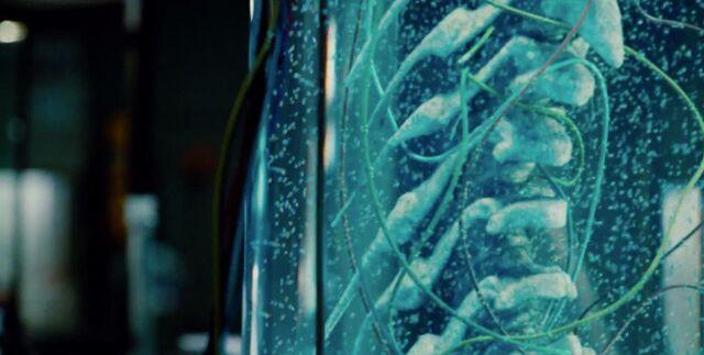 File:Jurassic-World-Trailer-Still-16-700x353.jpg