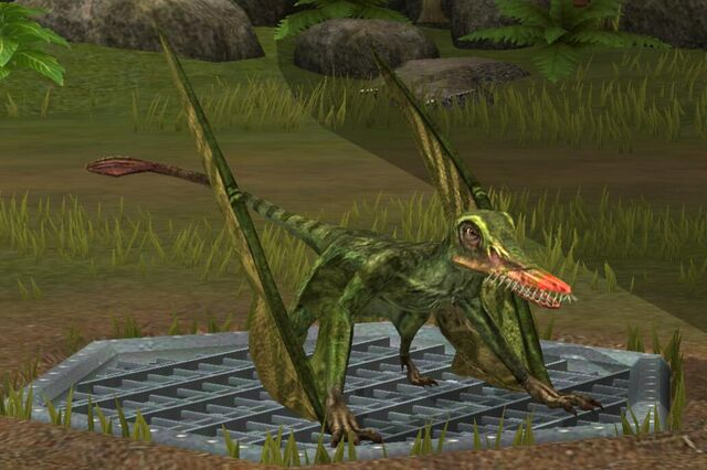 File:Rhamphorhynchus (16).jpg