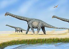 Datei:Alamosaurus.jpg