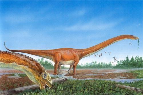 File:Bindon mamenchisaurus jpg.jpg