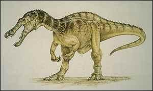 File:213073 suchomimus tenerensis dinosaur painting 300.jpg