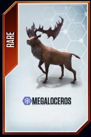 Megaloceros card.jpg