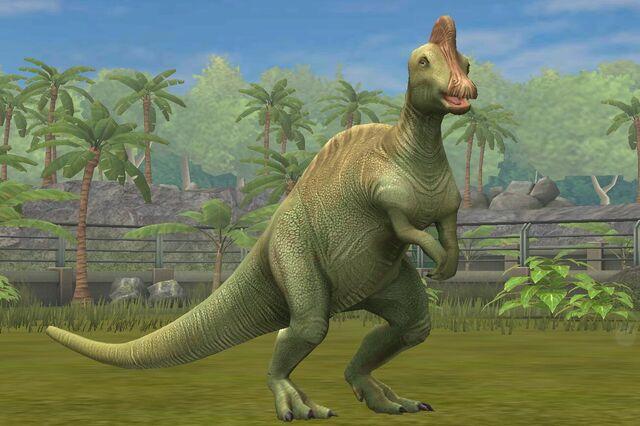 File:Corythosaurs Casuarius (70).jpg