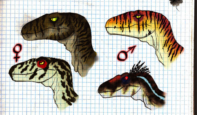 File:JP RAPTORS by JELSIN.jpg