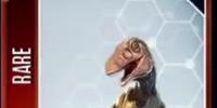 Pyroraptor/JW: TG