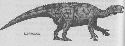 Iguanodon.jpeg