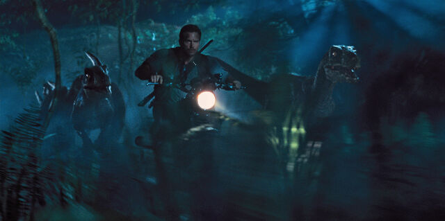 File:Owen with Raptors.jpg