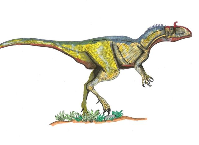 File:Jurassic Park Cryolophosaurus by hellraptor.jpg