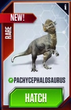 File:Pachycephalosaurus (28).jpg