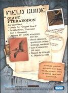 2001 Jurassic Park III 3-D 59 Giant Pteranodon back