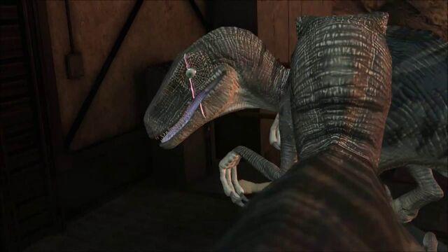 File:Scarred-raptor-leader-jptg 14.jpg
