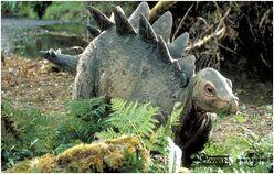Stegosaurus baby.jpg