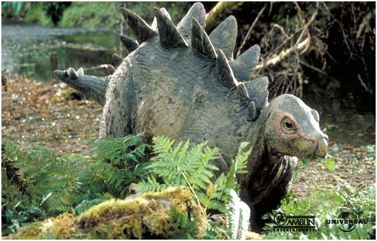 File:Stegosaurus baby.jpg