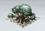 File:Medium Garden Tree.png