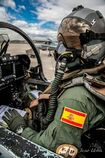ARF Pilot
