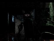 Kittystandingcam7