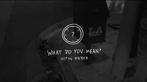 What Do You Mean? - Behind The Scenes