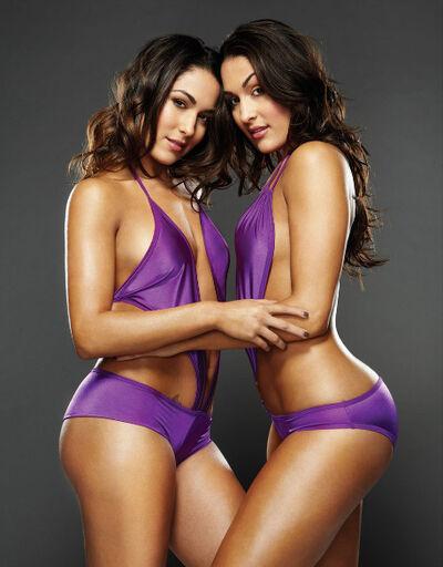 Bella-Twins-the-bella-twins-15131966-458-586-1--1- - Copy