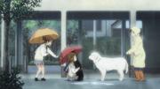 Yui's misfortune